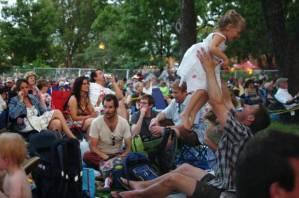 Crowd at 2013 Denton Arts & Jazz Festival